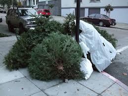 Tree garbage