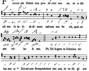 Graduale Novum. Editio magis critica iuxta SC 117. Tomus I: De dominicis et festis, p. 251-252. (c) ConBrio Verlagsgesellschaft/Libreria Editrice Vaticana 2011.