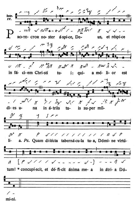 Graduale Novum. Editio magis critica iuxta SC 117. Tomus I: De dominicis et festis, p. 310. (c) ConBrio Verlagsgesellschaft/Libreria Editrice Vaticana 2011.