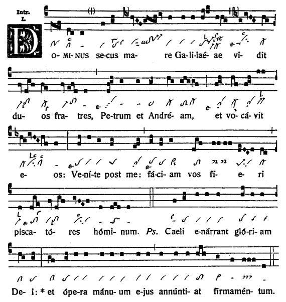 Graduale Novum. Editio magis critica iuxta SC 117. Tomus I: De dominicis et festis, p. 228-229. (c) ConBrio Verlagsgesellschaft/Libreria Editrice Vaticana 2011.